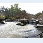 Watershed moment for Tassie's water authorities