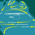 The Pacific Garbage Patch and Mapping the Ocean Currents Moving The Plastics