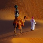 10-year-old Raffia brings you a camel's-eye view of the Liwa Desert. (Courtesy Google)