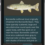 Utah DWR launches hunting & fishing app on Android and iOS