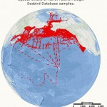 40 Years of North Pacific Seabird Survey Data Now Online