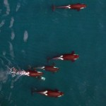Unmanned Aerial Vehicle Offers a New View of Killer Whales