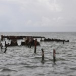 NOAA's Marine Debris Program funds 13 new community-based removal projects