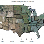 BigData Earth Completes Project on High-resolution (1 meter) Vegetation Mapping for 48 Contiguous U.S. States