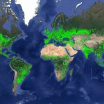 New Map of Worldwide Croplands Supports Food and Water Security