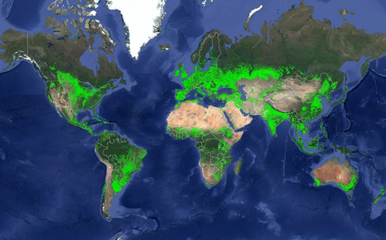 New Map of Worldwide Croplands