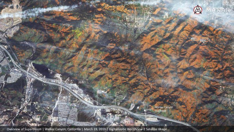 DigitalGlobe Satellite Imagery: California Superbloom