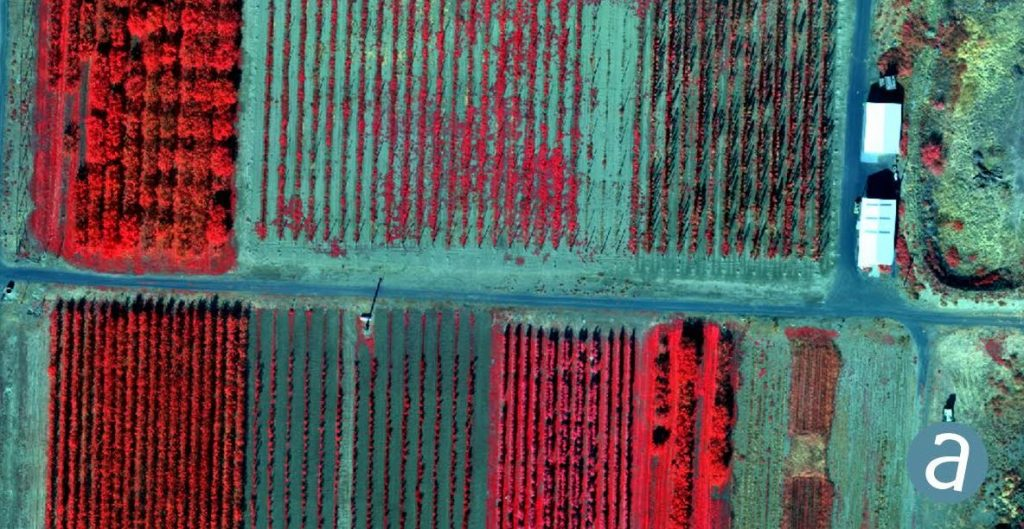 SimActive Releases Version 8.2 for Processing of Multispectral Imagery