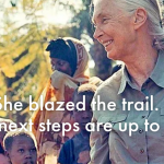 Esri and the Jane Goodall Institute Partner to Provide Community Mapping Tools to Protect Nature