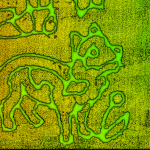 RedTail LiDAR Systems produces amazing corn maze images