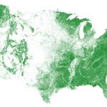 US Tree Map: EarthDefine Creates the Most Detailed Map of America's Trees