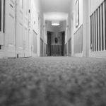 How to Calculate the Cost for Carpet Removal