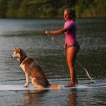 How to Safely Go Paddleboarding with Your Dog?